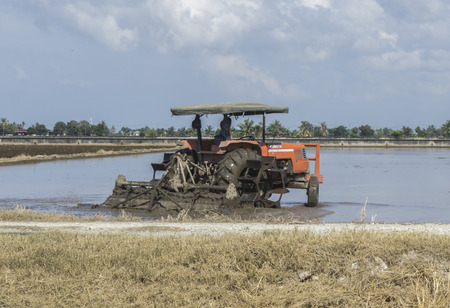 technologically: Sekinchan, Malaysia-31 JANUARY 2016;Worker uses a machine to tilling the soil for planting rice on paddy field .Sekinchan is one of the major rice supplier in Malaysia. Editorial