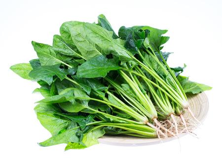 Spinach Standard-Bild