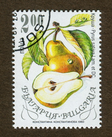 Bulgaria stamp no circa date: A stamp printed in Bulgaria shows pear illustration.