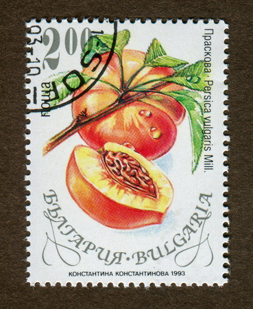 Bulgaria stamp no circa date: A stamp printed in Bulgaria shows peach illustration. Reklamní fotografie