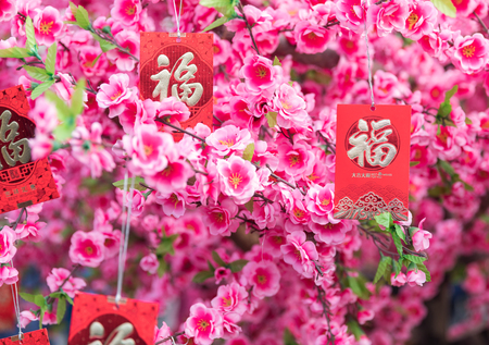 Chinese New Year decorations, The text in the picture is