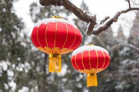 Hanging up Chinese red lanterns 写真素材
