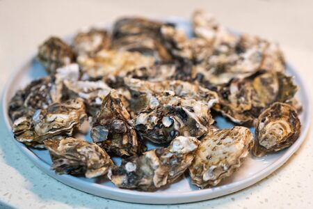 A plate of delicious oysters