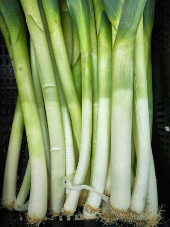 Fresh leek stems for sale in market