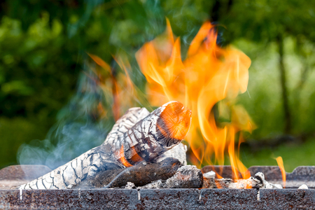Logs burn with a bright flame Stock Photo