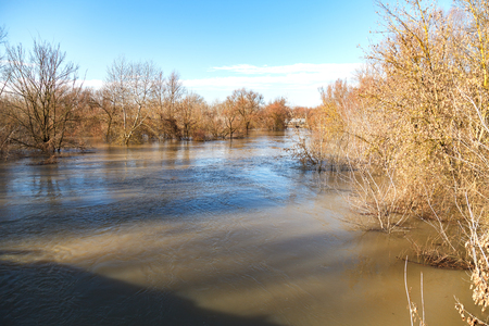 The river after the downpours came out of the banks. Flooding of river bank, trees after flood Stock Photo