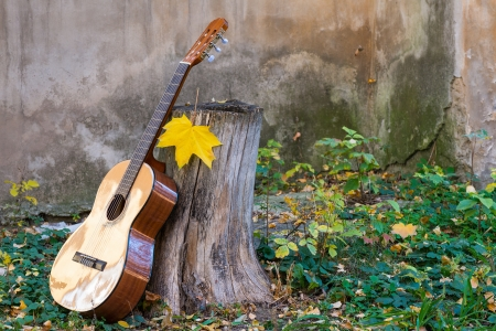 classical guitar in the autumn leaves and next to old wall photo