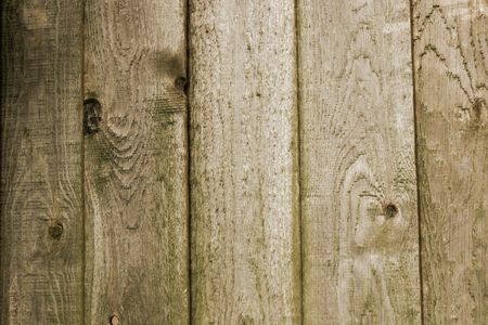 Five planks from an old rotting wooden fence