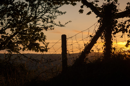 A tree and wire fence with fence post silhouetted against a red sky at sunset Stock Photo
