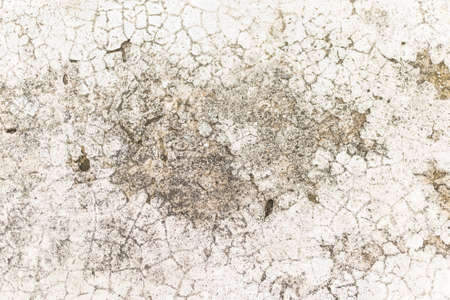 cement floor: rough and cracked cement floor texture