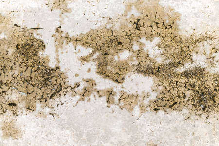cracked cement: rough and cracked cement floor texture
