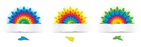 Three Rainbow Flowers