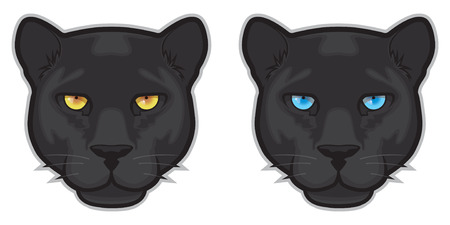 black panthers: Black Panther Face