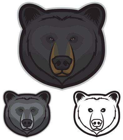 Black Bear Face Vector