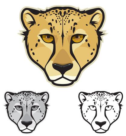 undomesticated cat: Cheetah Face Illustration