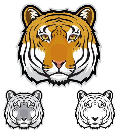 sumatran: Tiger Face Illustration