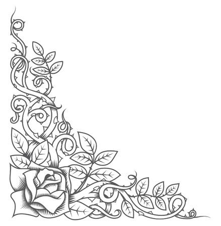 thorn bush: Rose and Thorns Border Illustration