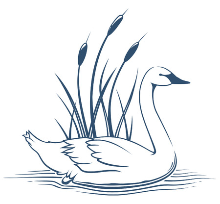 cattails: Swan Icon Illustration