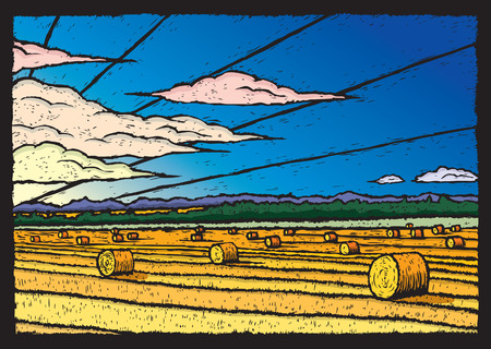 hay field: Hay Field Illustration