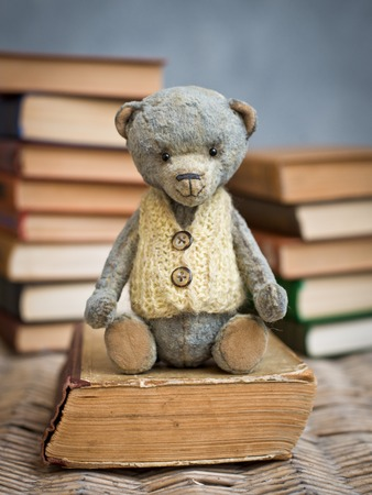 teddy bear teddy reading a book in the library Banque d'images - 113675756
