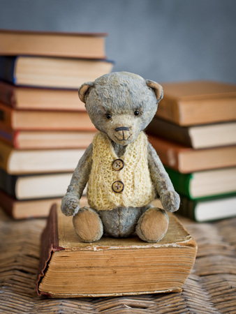 teddy bear teddy reading a book in the library Stockfoto