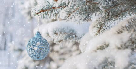 Winter nature Christmas background with frozen spruce, glitter, bokeh, snow. Happy new year 2020 Text space. Christmas toy, decoration.