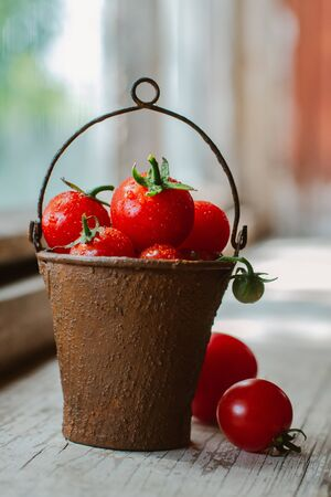 Cherry tomatoes in a decorative rusty old bucket on the background of an old wooden window. Beautiful still life of grape tomatoes are small in contrast the light with water drops. Standard-Bild - 129167667