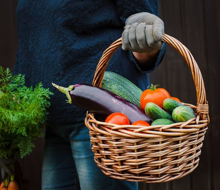 Basket of vegetables in the hands of a farmer on a wooden. The concept of a healthy lifestyle and ecological nutrition. raw food diet Standard-Bild - 129167694