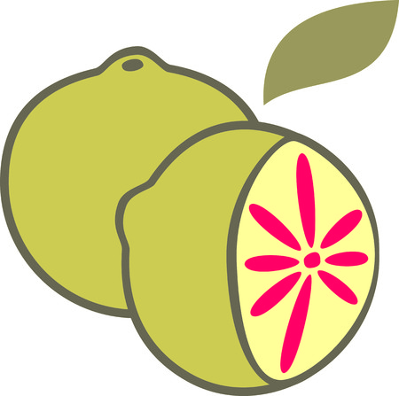 png: Pomelo Fruits Illustration