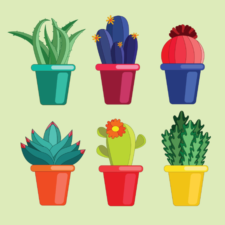 Cactus and Succulents Collection Illustration