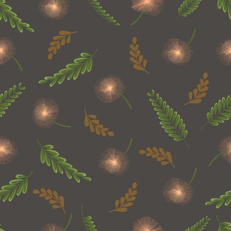 Mimosa Pudica Illustration