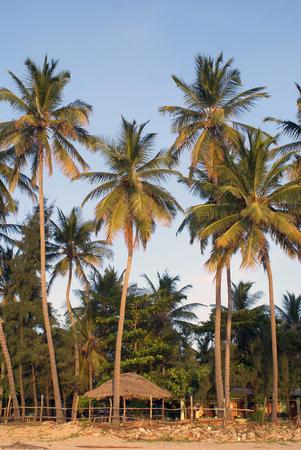 Uppuveli beach, east coast Sri Lanka                      photo