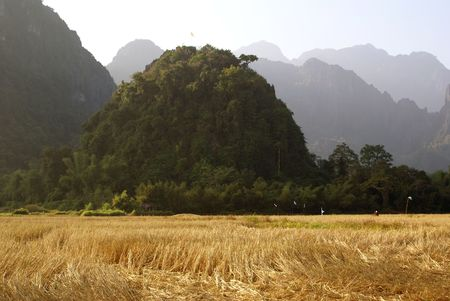 developing country: Rock on the field in Laos