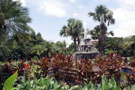 fountainhead: Palm trees, garden and fountain in Manila