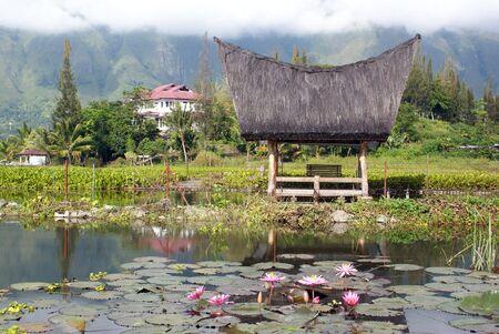 Traditional house and lotuses on the Samosir island, Sumatra