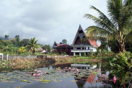 Lotus pond and houses on Samosir island, Sumatra                 photo