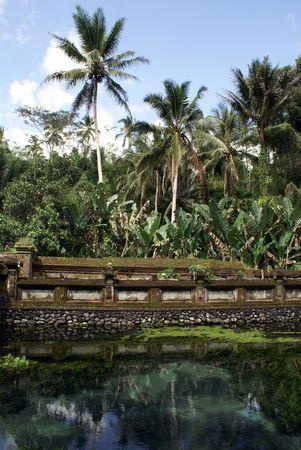 Pond in Tirta Empul temple near Ubud, bali          photo