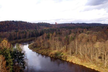 sigulda: R�o y bosque en el oto�o de Sigulda, Letonia Foto de archivo