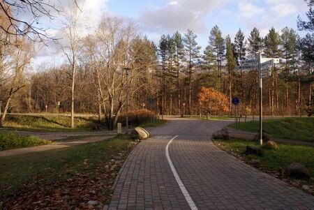 sigulda: Oto�o y vac�a carretera, cerca de Sigulda, Letonia