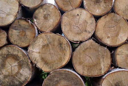 Birch tree wood logs in Russia                 photo