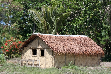 Hut and trees in Efate island, Vanuatu Stock Photo