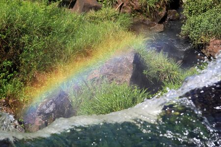 Green grass, river, rainbow and Iguazu waterfall photo