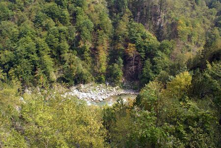 hill of tara: Canyon Tara, Montenegro