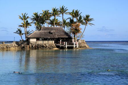 People snorkeling and byuilding under palm trees on the beach in Fiji photo