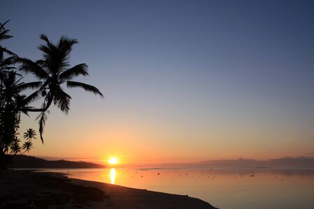 Sunset and palm trees on the beach in Fiji photo