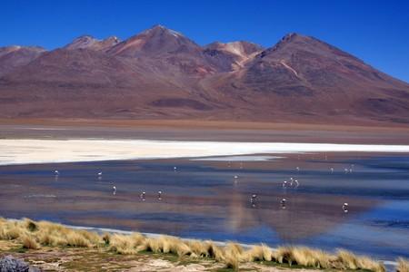 Mountain, lake and flamingoes near Uyuni in Bolivia photo