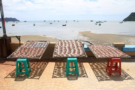 Dry fish on the stalls on the beach in Prachuap Khiri Khan in Thailand