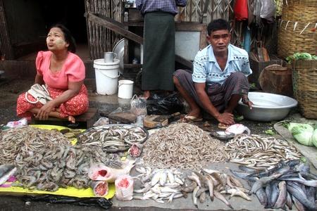 ミャンマー、ヤンゴンの路上の魚市場