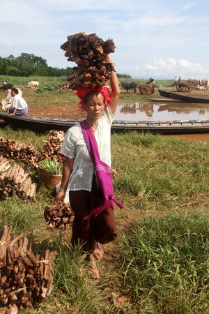 Woman with bundles of fire wood in the market, Inle lake, Myanmar