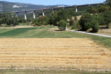 Highway and field in the center of Istria, Croatia photo